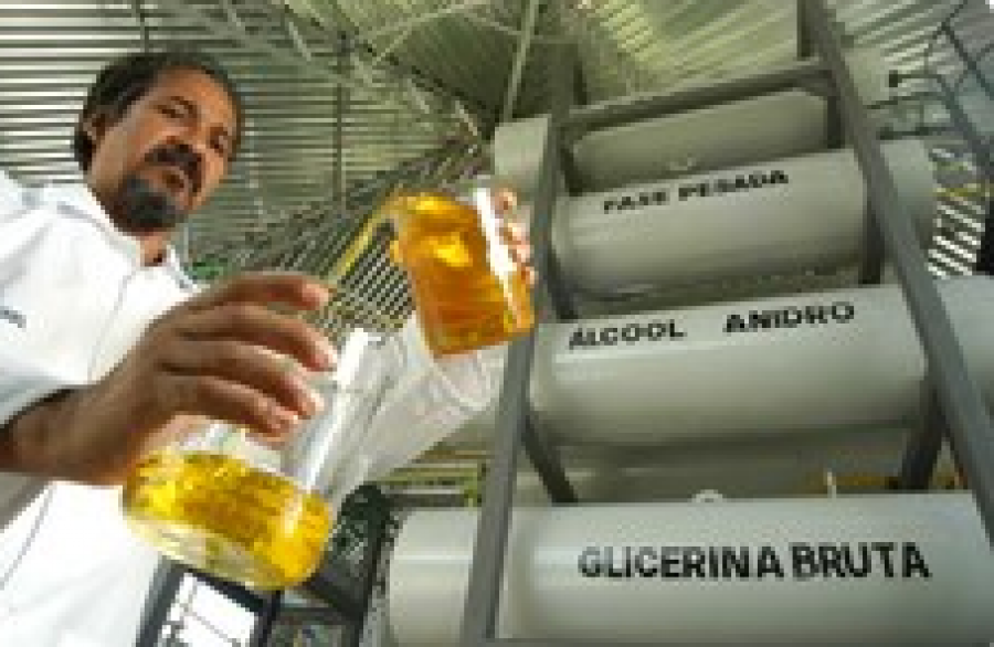Aumento do biodiesel no diesel ajudará Brasil a cumprir metas ambientais, afirma Dilma