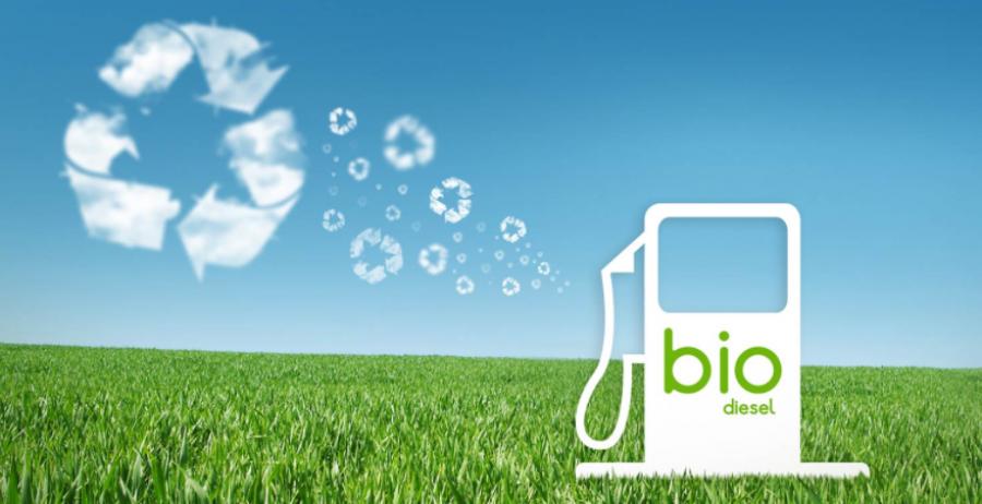 Biodiesel e saúde humana: uma proposta que une sustentabilidade e saúde pública